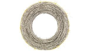 Parmiggiani-Corona-di-spine-001